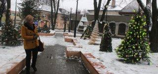 Kalėdinių eglučių parko idėja pasiteisino su kaupu