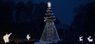 Savivaldybės vadovų sveikinimas šv. Kalėdų ir Naujųjų metų proga