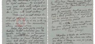 Netikėti atradimai apie Joną Žemaitį: nuo laiško iki virtualios realybės filmo
