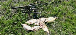 Karšių žvejybos draudimo laikotarpis šiemet prasidės vėliau