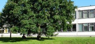 Smalininkų L. Meškaitytės pagrindinė mokykla priima priešmokyklinukus ir mokinius