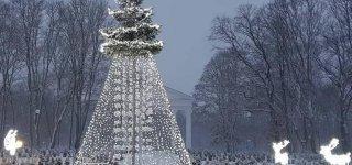 Naktinio Kalėdinių eglučių turo dalyviai užsuks ir į Jurbarką