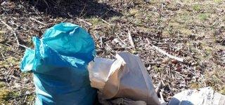 Miškininkų bendruomenė akciją DAROM keičia DARAU