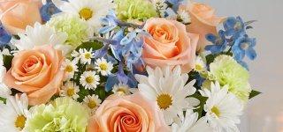Jurbarko rajono savivaldybės mero sveikinimas Motinos dienos proga
