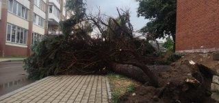 Jurbarke prašniokštusi audra vartė medžius, užtvindė gatves