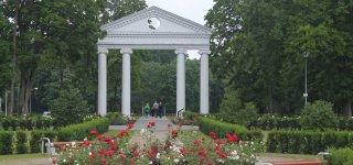 Kur žydi rožės,  pavadintos kunigaikščių Vasilčikovų vardais?