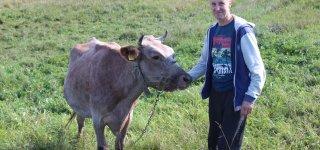 Ūkininkas Ričardas Tamulis tikisi, kad gavus paramą augintinės Mėtos pienas galės virsti skaniu sūriu.