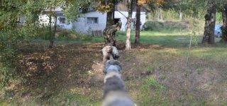 Pasveikę nuo COVID-19 infekcijos Kęstučio bataliono NPPKT kariai grįžo į rikiuotę