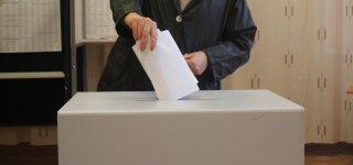 Prasidėjo pakartotinis balsavimas iš anksto