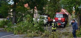 Ugniagesiai gelbėtojai perspėja dėl stipraus vėjo