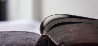 2020 metų valstybinės kalbos vartojimo ir taisyklingumo kontrolės ataskaita