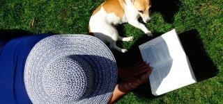 10 knygų, kurios leis pakeliauti po užsienį