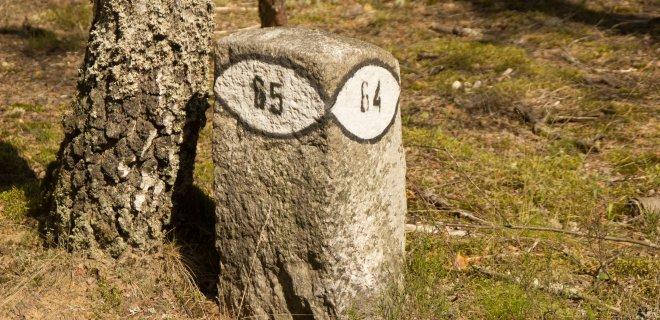 Vokiečių miškininkų palikimas – štai taip atrodantys akmenstulpiai. / R. Bakšienės nuotr.