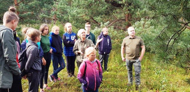 Miško auginimo specialistė Danutė Varkojienė JMB supažindina su sėkline plantacija.
