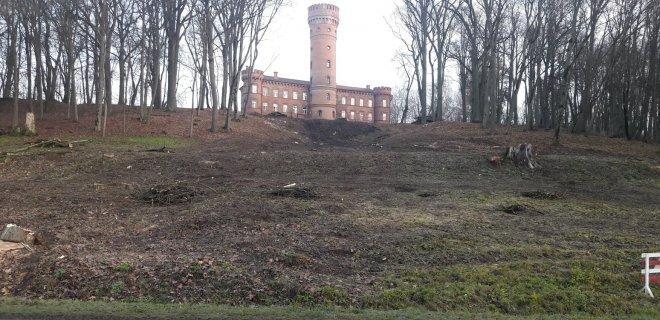 Atlikus kraštovaizdžio formavimo kirtimus, nuo kelio Kaunas-Jurbarkas atsivėrė pilis. / Č. Meškausko nuotr.