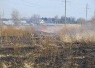 Atšilus orams - dažnėjantys žolės deginimo atvejai