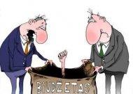 Biudžete – skylė, o reikia 13 milijonų