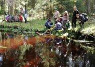 Jaunieji miško bičiuliai tyrinėjo Viešvilės upelio vandens kokybę