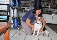Vienintelė Jurbarko parduotuvė, kurioje klientus pasitinka šuo