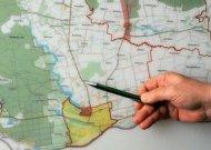 Tęsiami savivaldybės veiksmai dėl Dainių miško išsaugojimo