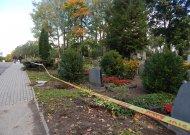 Senųjų kapinių tvoros atnaujinimo darbai jau prasidėjo