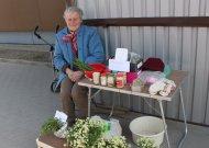 Našlaitės turgeliuose užleidžia vietą kitoms gėlėms