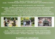 Viešvilės miestelio dienos: nuo karybos iki Viešvilės garbės