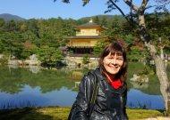 Kinkakudži pagoda (Auksinė šventykla) Kiote. Japonija