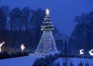 Sveikinimas Šv. Kalėdų ir Naujųjų metų proga