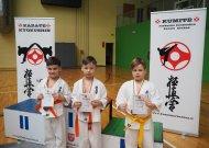 Atvirose rajono karate pirmenybėse - įspūdingas jurbarkiečių iškovotų medalių skaičius
