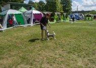 Dvaro parke savaitgalį galėsite pasigrožėti įvairiausių veislių šunimis