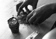 Už neteisėtą disponavimą narkotinėmis ar psichotropinėmis medžiagomis – 19 ikiteisminių tyrimų