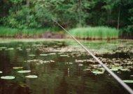 Baigėsi mėnesį trukęs draudimas žvejoti žiobrius