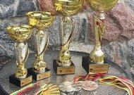 Sporto rungčių nugalėtojau bus apdovanoti štai tokiomis taurėmis