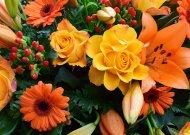 Savivaldybės vadovų sveikinimas Lietuvos socialinių darbuotojų dienos proga